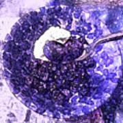 Blueberries For Breakfast Art Print