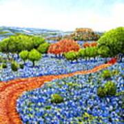 Bluebonnets Across Texas Art Print
