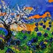 Bluecornflowers 451120 Art Print