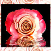 Blush Reflection Art Print