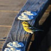 Boardwalk Inspector Art Print