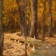 Boardwalk Through The Woods Art Print