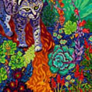 Bobcat Kachina  Art Print