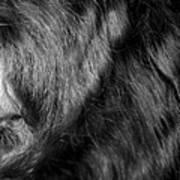 Body Of Hair Art Print