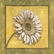 Bohemian Daisy 1 Art Print