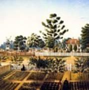 Bois De Fleche Plantation Louisiana 1861 Art Print