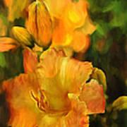 Bokah Lily Art Print