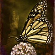 Boneyard Butterfly Art Print