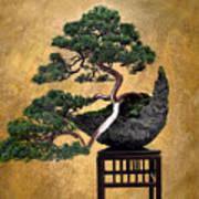 Bonsai 3 Art Print