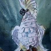 Boo The Umbrella Cockatoo Art Print