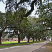 Boone Hall Plantation Art Print