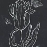 Botanique 4 Art Print