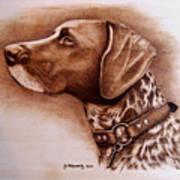 Boscoe Art Print