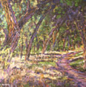 Bosque Light Art Print
