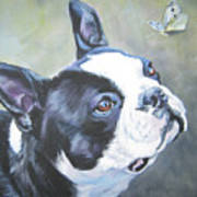 boston Terrier butterfly Art Print by Lee Ann Shepard