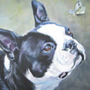 boston Terrier butterfly Art Print