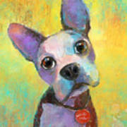 Boston Terrier Puppy Dog Painting Print Art Print