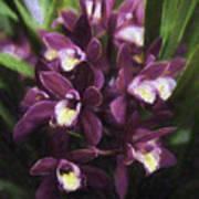 Botanic Garden Orchid Bouquet 5 Art Print