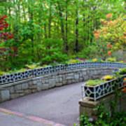 Botanical Bridge Art Print