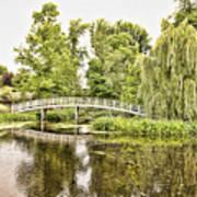 Botanical Bridge - Van Gogh Art Print