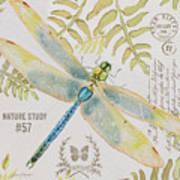 Botanical Dragonfly-jp3418b Art Print