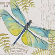 Botanical Dragonfly-jp3423b Art Print