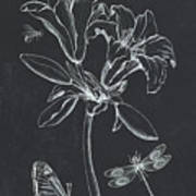 Botanique 3 Art Print