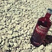 Bottle And The Beach  Art Print