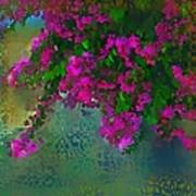 Bougainville Delight Art Print by Seema Sayyidah
