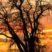 Boulder  County Sunset Art Print