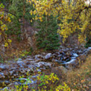 Boulder Creek Autumn View  Art Print