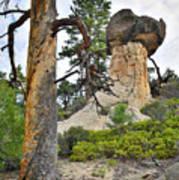 Boulder Mountain Art Print
