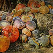 Bountiful Fall Harvest Art Print