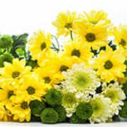 Bouquet Of Fresh Spring Flowers Isolated On White Art Print