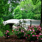 Bow Bridge In Springtime Art Print