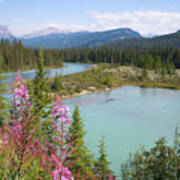 Bow River Banff National Park Canada Art Print