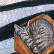 Box Cat Art Print