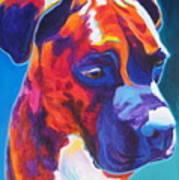 Boxer - Jax Art Print by Alicia VanNoy Call