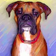 Boxer Beauty Art Print by Karen Derrico