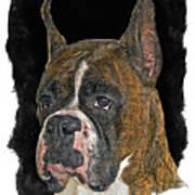 Boxer Art Print by Larry Linton