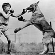 Boxing With Dog Art Print by Topical Press Agency