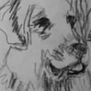 Boy And Dog Under Sky Art Print