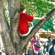 Boy In A Tree Art Print