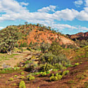Bracchina Gorge Flinders Ranges South Australia Art Print