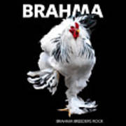 Brahma Breeders Rock T-shirt Print Art Print