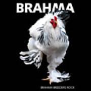 Brahma Breeders Rock T-shirt Print Art Print