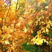 Branch Of Autumn Leaves Art Print