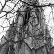 Branches Of Faith Art Print