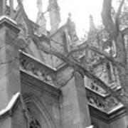 Branches Of Prayer Art Print