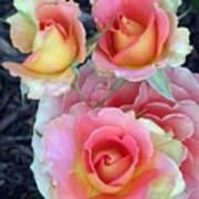 Brass Band Roses Art Print
